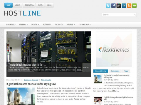 HostLine WordPress Theme