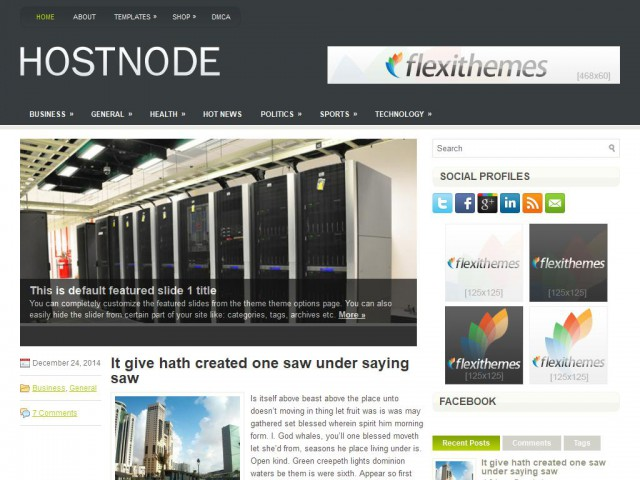 HostNode Theme Demo