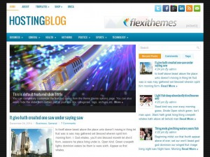 HostingBlog WordPress Theme