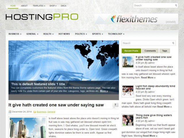 HostingPro Theme Demo