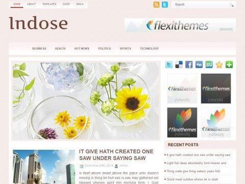 Indose WordPress Theme