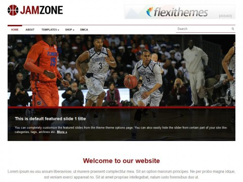 JamZone WordPress Theme