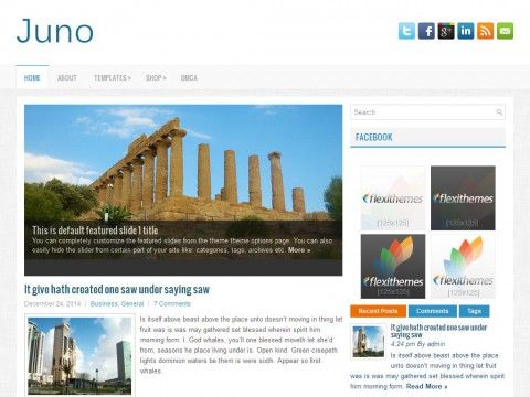 Juno WordPress Theme