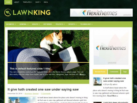LawnKing WordPress Theme