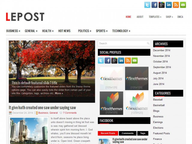 Lepost Theme Demo