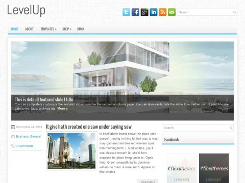 LevelUp WordPress Theme