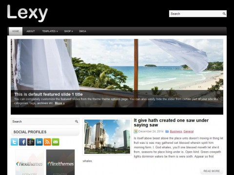 Lexy WordPress Theme