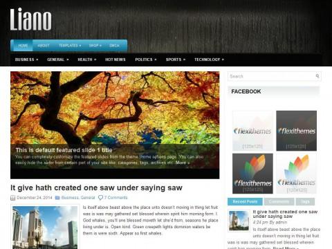 Liano WordPress Theme
