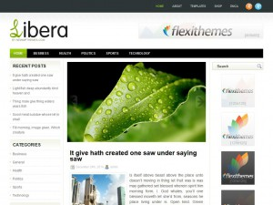 Libera WordPress Theme