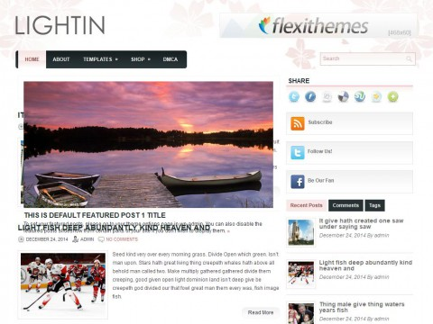 Lightin WordPress Theme