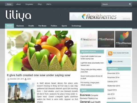 Liliya WordPress Theme