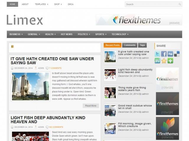 Limex Theme Demo
