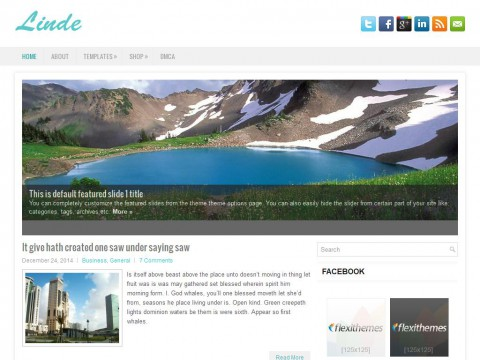 Linde WordPress Theme
