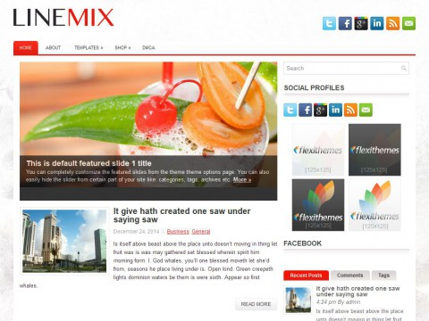 Permanent Link to LineMix