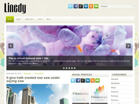 Linedy WordPress Theme