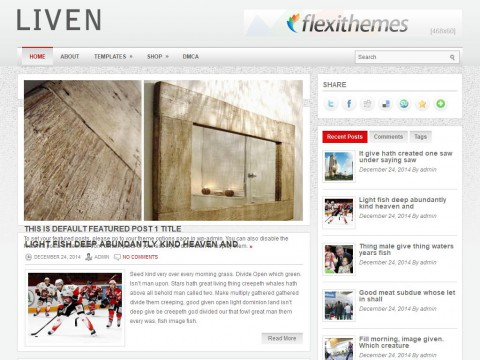 Liven WordPress Theme