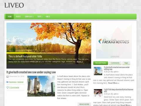 Liveo WordPress Theme