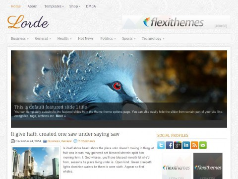 Lorde WordPress Theme