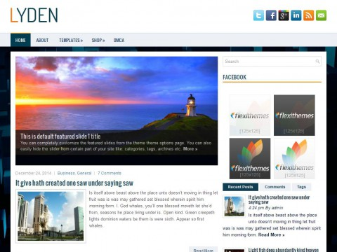 Lyden WordPress Theme
