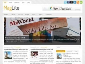 MagLite | More Details