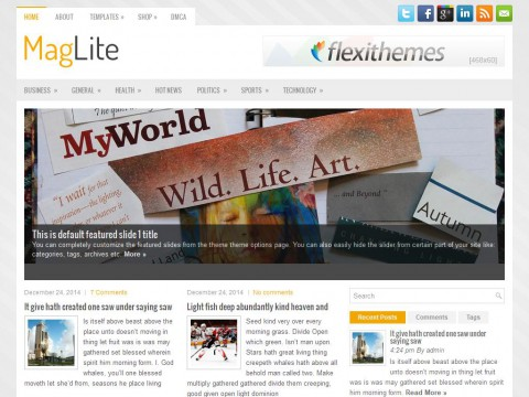 MagLite WordPress Theme