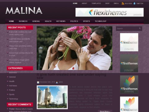 Malina WordPress Theme
