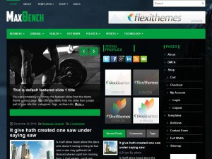 MaxBench WordPress Theme