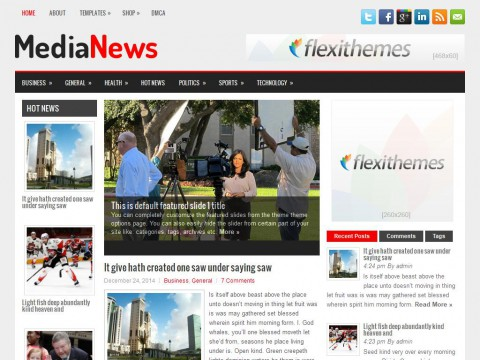 MediaNews WordPress Theme