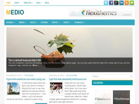Medio WordPress Theme
