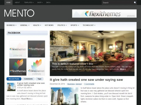 Mento WordPress Theme