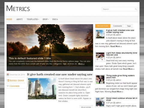 Metrics WordPress Theme