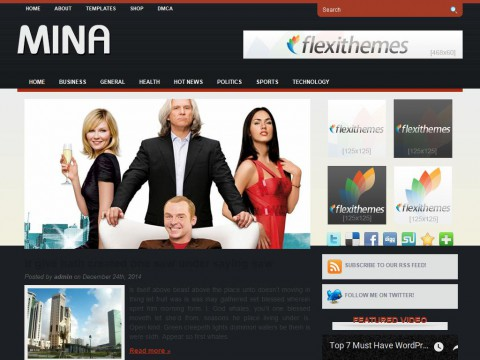 Mina WordPress Theme