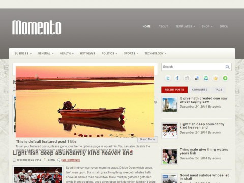 Momento WordPress Theme