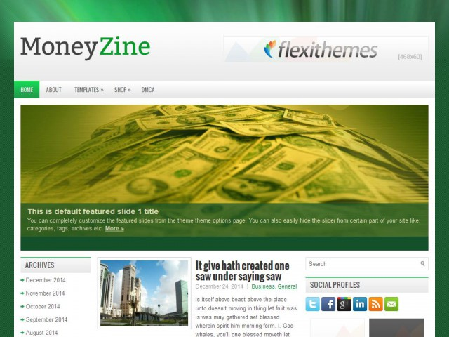 MoneyZine Theme Demo