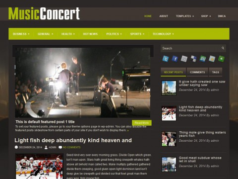 Permanent Link to MusicConcert