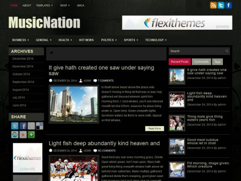 MusicNation WordPress Theme
