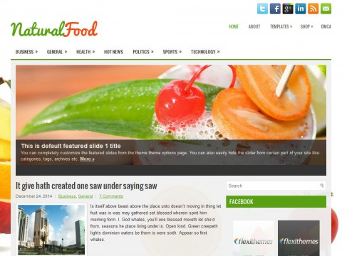 NaturalFood WordPress Theme