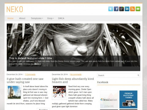 Neko WordPress Theme
