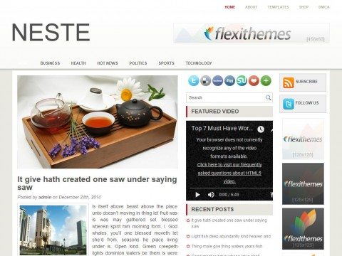 Neste WordPress Theme