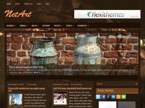 NetArt WordPress Theme