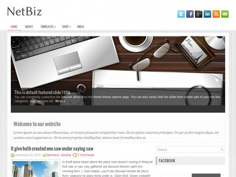 NetBiz WordPress Theme