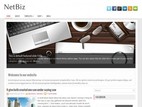 Permanent Link to NetBiz