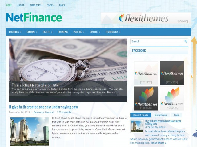 NetFinance Theme Demo
