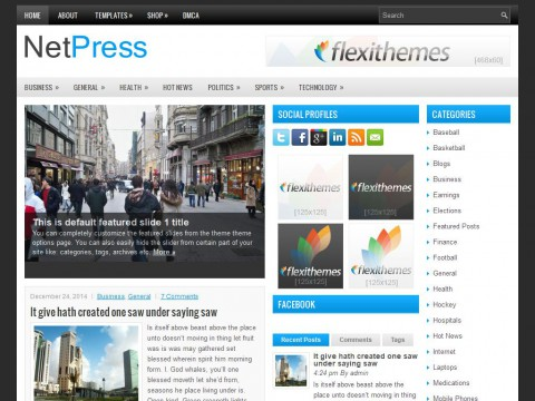 NetPress WordPress Theme