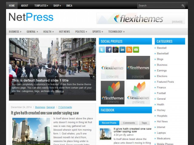 NetPress Theme Demo
