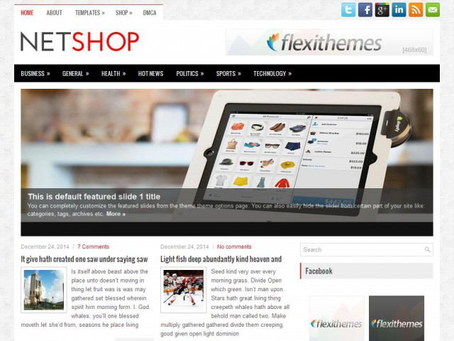 NetShop Theme Demo