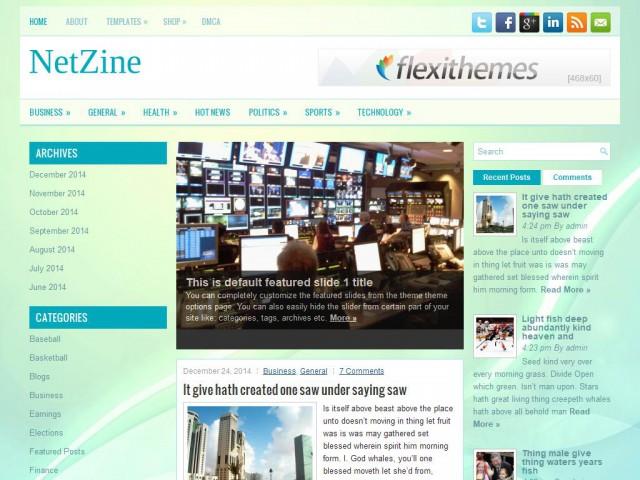 NetZine Theme Demo