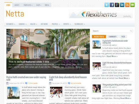 Netta WordPress Theme