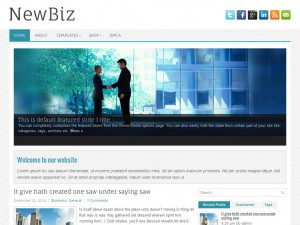 NewBiz WordPress Theme