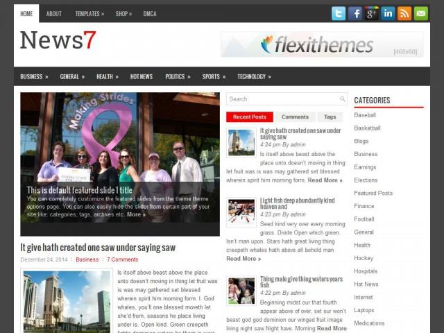 News7 Theme Demo